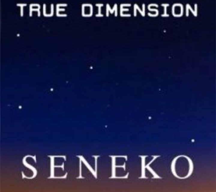 Seneko – True Dimension