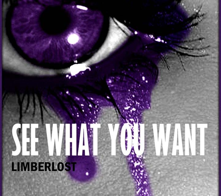 Limberlost – See What You Want