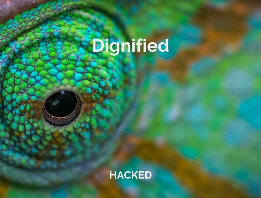 Dignified – Hacked