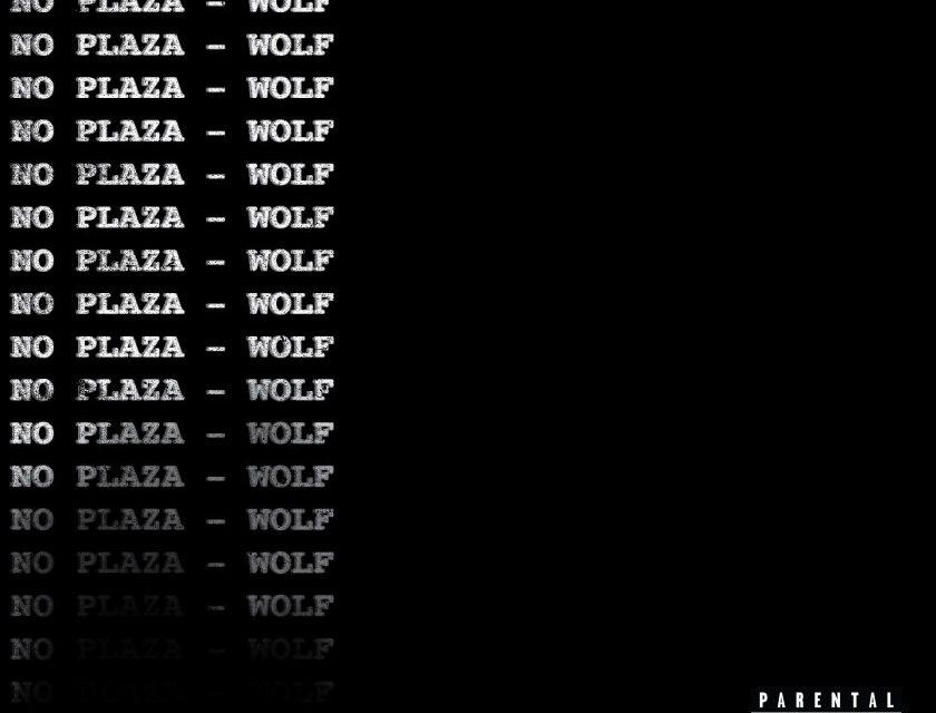 Wolf Fradyy – No Plaza