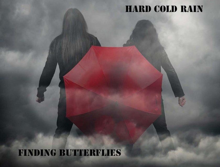 Finding Butterflies –  Hard Cold Rain