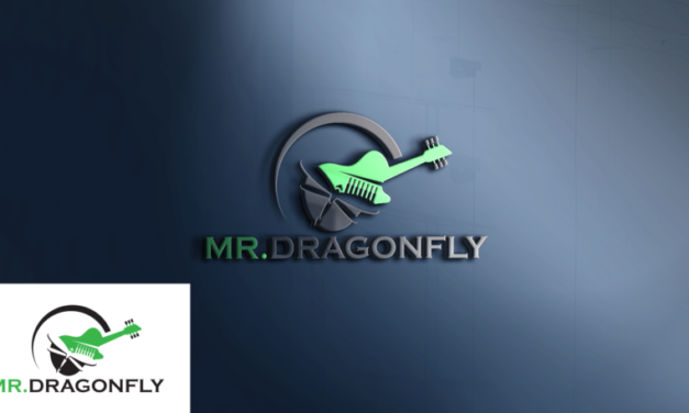 Introducing Mr.Dragonfly
