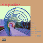 NX Panther – You May Have Been Wondering Where I've Been