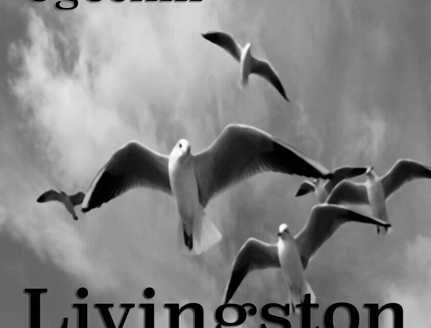 Ugochill – Livingston