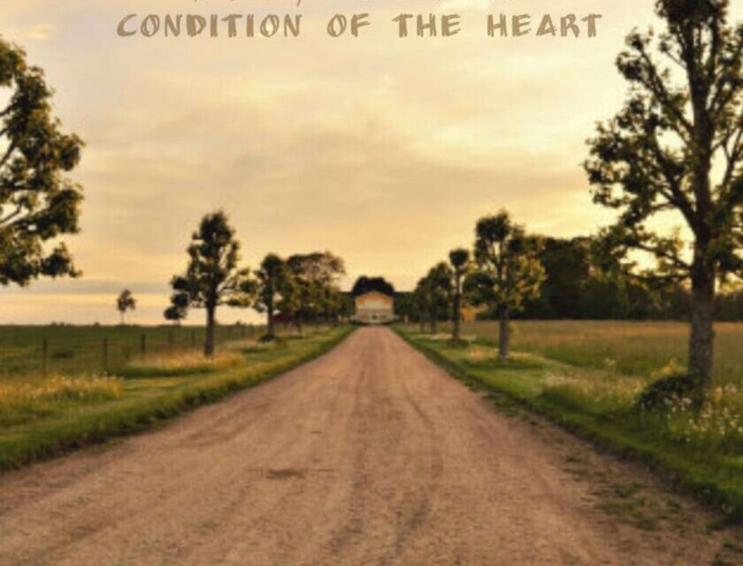 Rory David – Condition Of The Heart